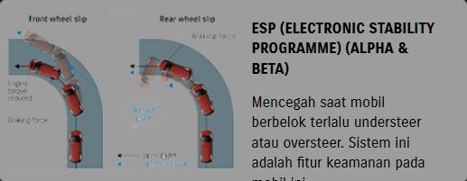 ESP (Electronic Stability Programme (Alpha & Beta)
