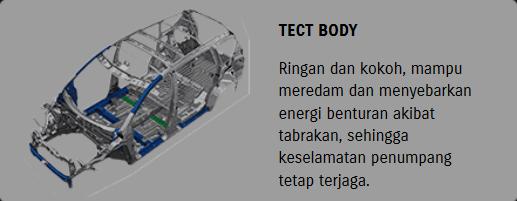 Tect Body